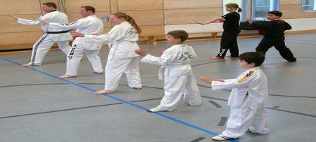 Taekwondo-Internet